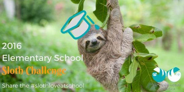 2016 Elementary School Sloth Challenge